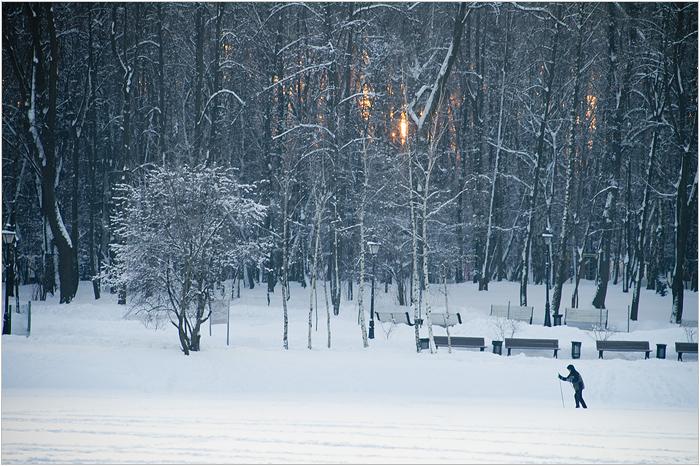 Царицыно парк. Лыжник
